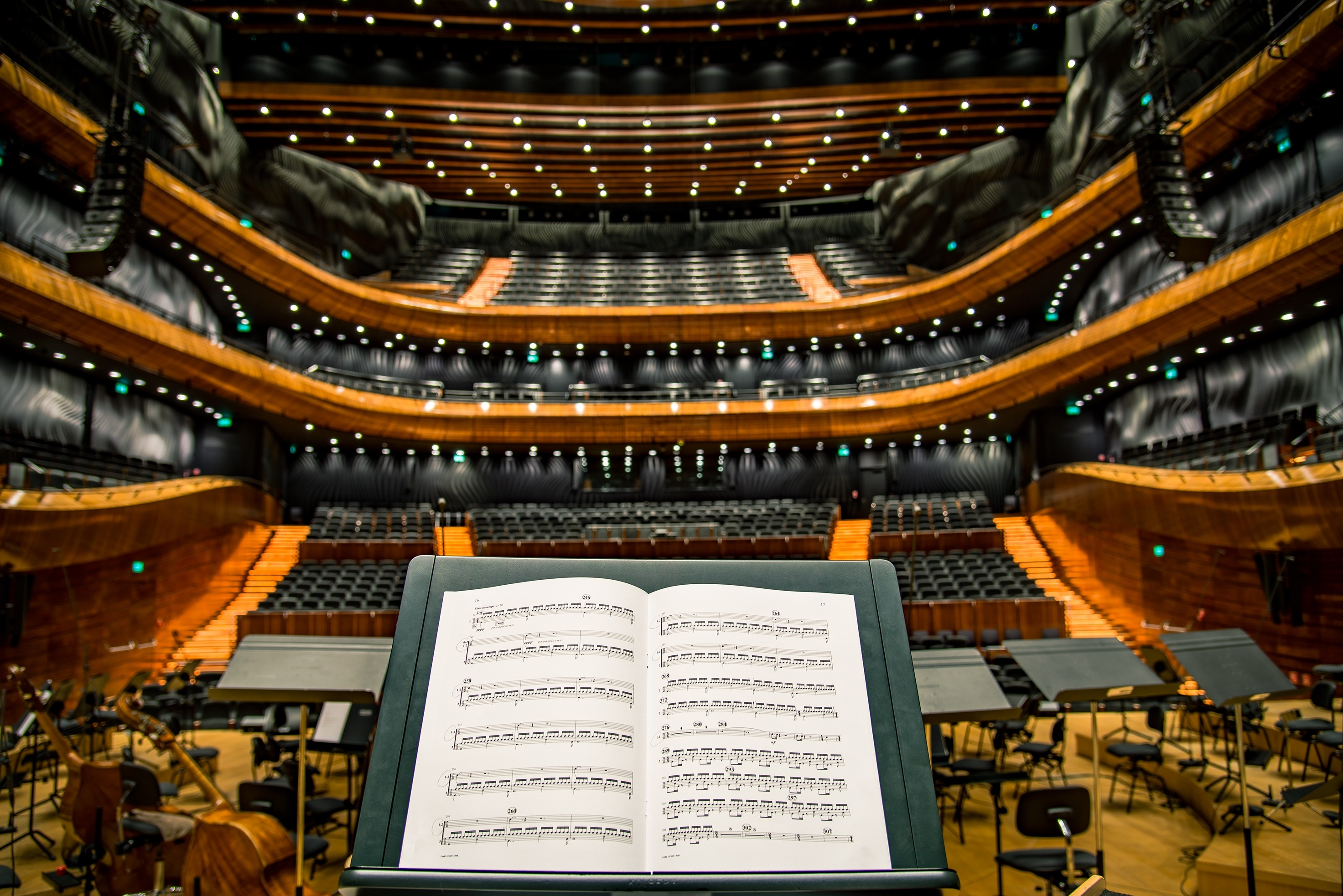 Conductor's view of the auditorium